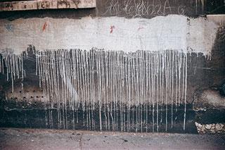 1.000 palabras sobre el muro